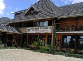 Hotel photo: Hotel Bisons