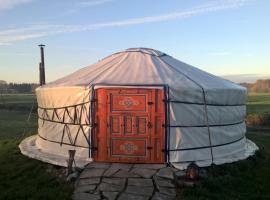 صور الفندق: Mobo yurt