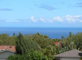 Hotel photo: Waikoloa Honu