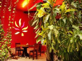 Hotel photo: Frida House