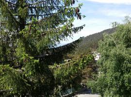 Hotel photo: Apartamento Puerto de Navacerrada