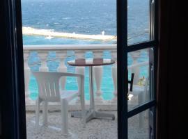 Hotel photo: Anthemis Rooms