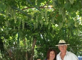 Hotel Photo: Patmos Villas