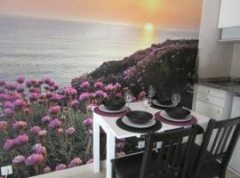 Hotel photo: Sea Flowers Apartment