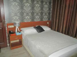 A picture of the hotel: Asus Palmiye Otel