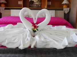 Фотографія готелю: La Necussella