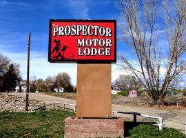 Hotel Photo: Prospector Motor Lodge