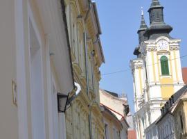 Foto di Hotel: Belváros Vendégház