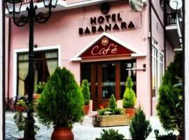 Hotel photo: Hotel Babanara