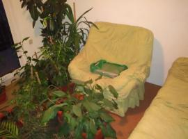 A picture of the hotel: Holiday home Patar