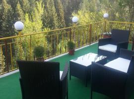 Hotel Photo: Guest House Stoletnika