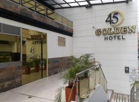 A picture of the hotel: Hotel Golden 45