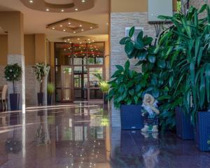 Отель Элона