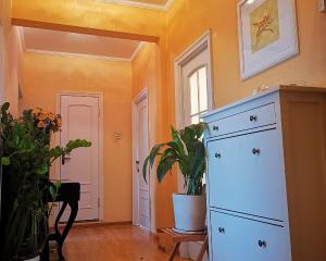 Bright and quiet room near TV Tower Ostankino