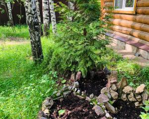 Усадьба Лесной Двор
