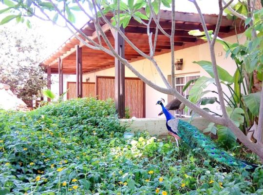 Otel fotoğrafları: Kibbutz Tiratzvi - Country Lodging