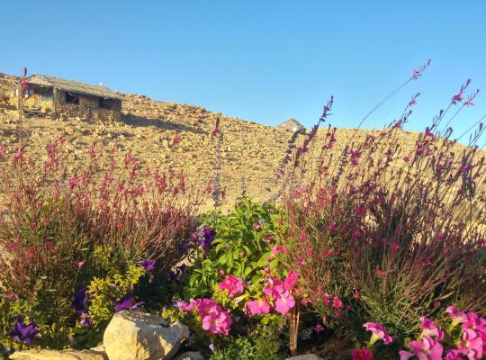 酒店照片: Succah in the Desert