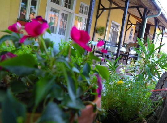 Хотел снимки: Villa Ricz