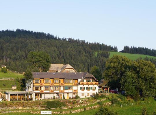 酒店照片: Landhotel Spreitzhofer