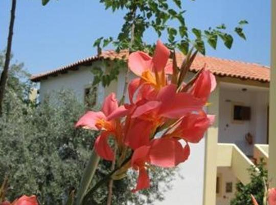 Хотел снимки: Hotel Heleni Apartments