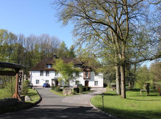 Φωτογραφίες του ξενοδοχείου: Hotel Wintersmühle