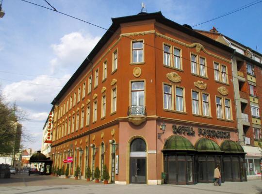 호텔 사진: Hotel Pannonia