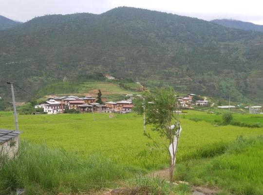 Хотел снимки: Chimi Lhakhang Village Homestay