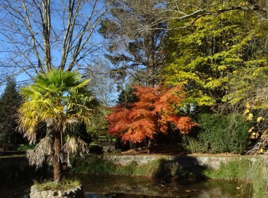 Φωτογραφίες του ξενοδοχείου: Jardin de Carrejo