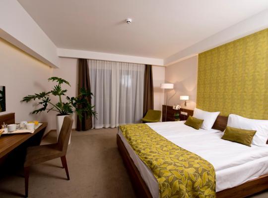 Ảnh khách sạn: Imola Hotel Platán