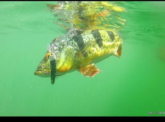 Hotel photos: Gatun Sport Fishing Lodge
