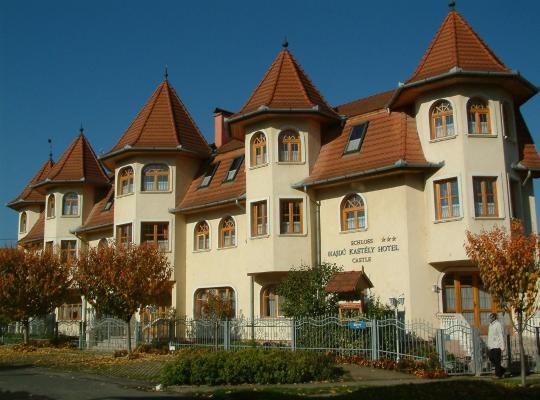 Хотел снимки: Hajdú Kastély Hotel