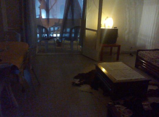 Zdjęcia obiektu: Bel Appartement Palestine