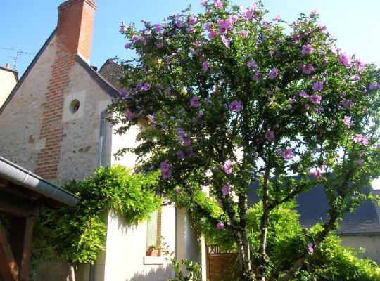 Zdjęcia obiektu: Le Petit Jardin Yoyo