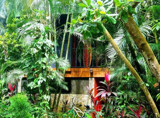 Hotel photos: Casajungla Hostel