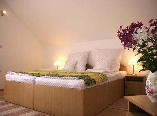 Hotel photos: Pensiunea Sighisoara