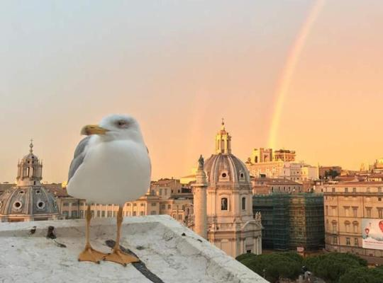 Viesnīcas bildes: Ripesbb Bnb In Rome