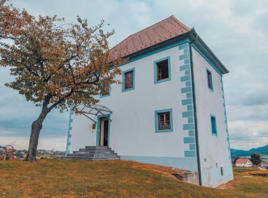 Hotel foto: Wine Grower's Mansion Zlati Gric