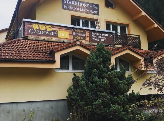 Otel fotoğrafları: Penzión Staré Hory