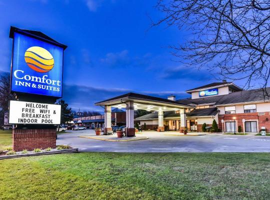 Хотел снимки: Comfort Inn & Suites Ambassador Bridge