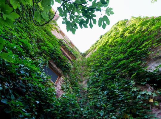 ホテルの写真: El Jardín Vertical