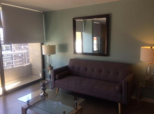 صور الفندق: Lindo departamento en barrio Lastarria