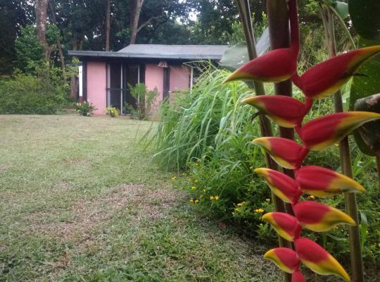 Fotos de Hotel: Umbral de la selva