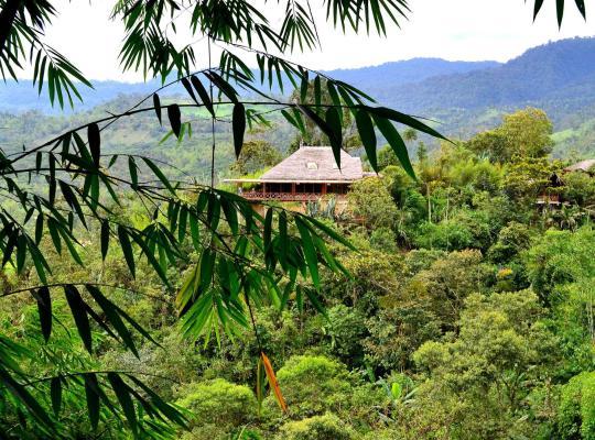 Φωτογραφίες του ξενοδοχείου: Terrabambu Lodge