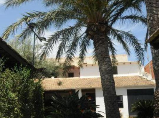 Hotel bilder: Palm Trees & Sun