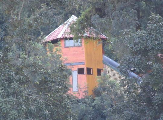 Ảnh khách sạn: Treehouse Spa