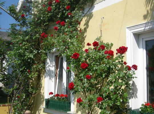 Хотел снимки: Pension Arkadenhof