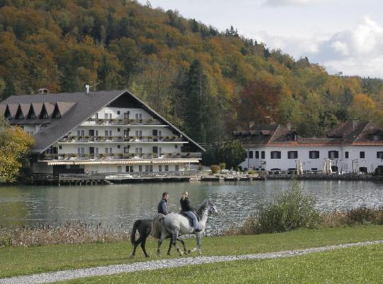 Fotos de Hotel: Hotel Alma & Castle Hrib