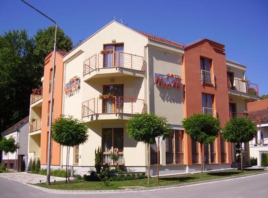 Photos de l'hôtel: Hotel Mladimir