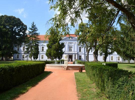 ホテルの写真: Hotel Kaštieľ Mojmírovce