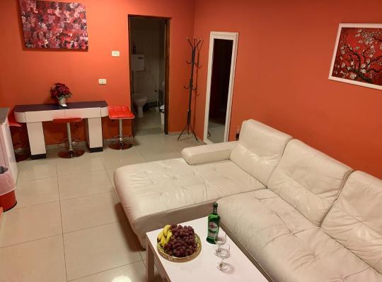 Otel fotoğrafları: Apartments on Smelyanski 37